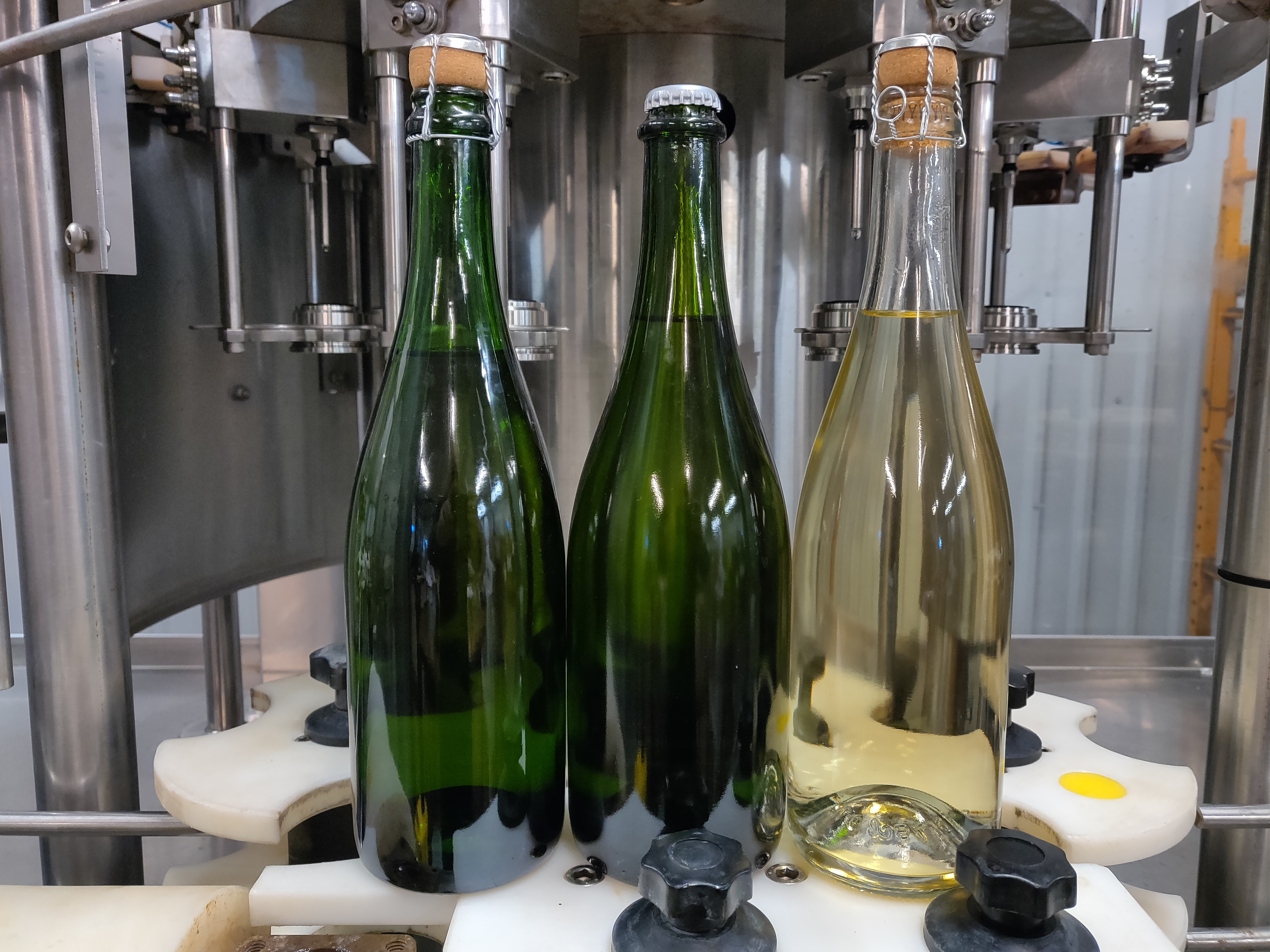 Carbonated Wine Bottling Service at Texas Custom Wine Works